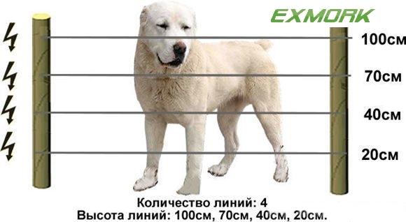 Электрические изгороди для собак