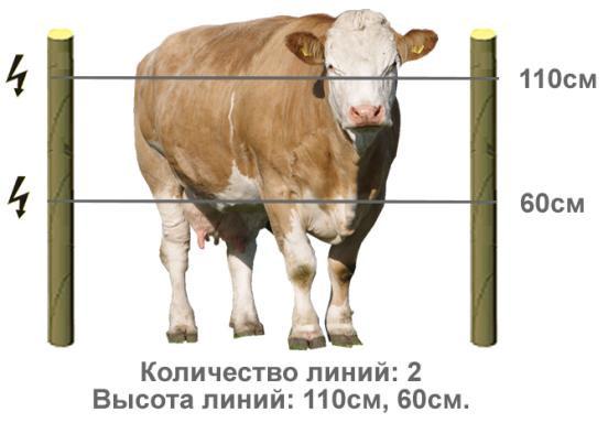 Высота провода
