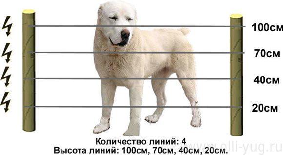 Высота проводника